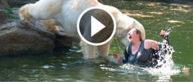 [Shocking video] Hungry Bear Tear Women into pieces in seconds